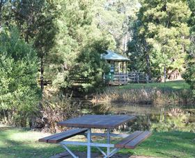 Northeast Park - Sunshine Coast Tourism