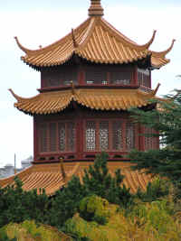 Chinese Garden of Friendship - Sunshine Coast Tourism