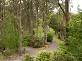 Mount Lofty Botanic Garden - Sunshine Coast Tourism