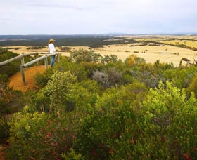 Archer Drive Scenic Drive and Lookout - Sunshine Coast Tourism