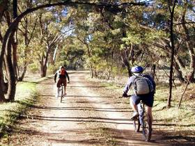 Bike About Mountain Bike Tours And Hire - Sunshine Coast Tourism