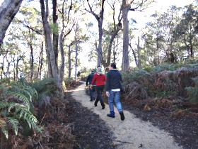 Bridport Walking Track - Sunshine Coast Tourism