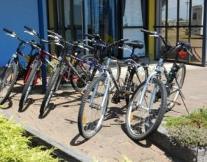 George Town to Low Head Walking and Cycling Trail - Sunshine Coast Tourism