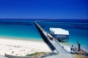Full-Day Busselton Jetty Train Ride  Dophin Discovery - Sunshine Coast Tourism