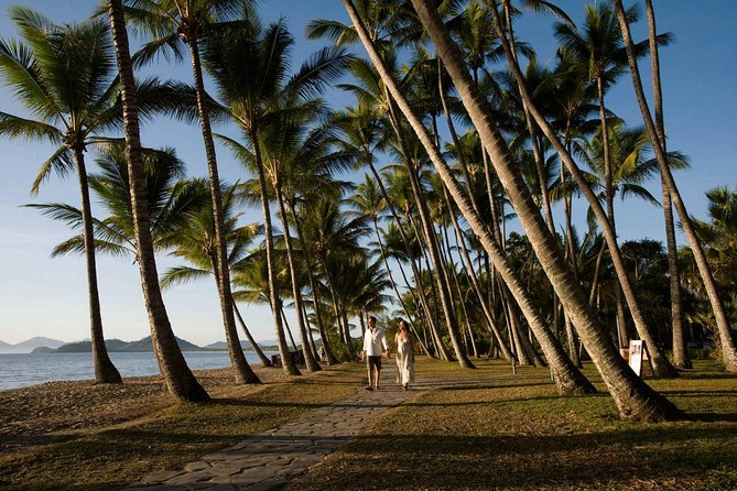 Port Douglas Round-Trip Transfer from Cairns with Free Time in Port Douglas - Sunshine Coast Tourism