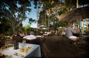 Fig Restaurant  Bar - Sunshine Coast Tourism