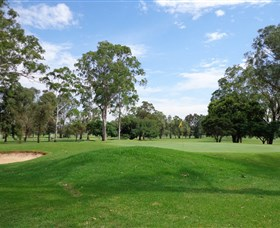 Singleton Golf Club - Sunshine Coast Tourism