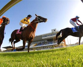 Wyong Race Club - Sunshine Coast Tourism