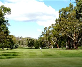 Cooma Golf Club - Sunshine Coast Tourism