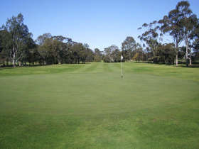 Maffra Golf Club - Sunshine Coast Tourism