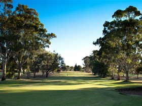 Loxton Golf Club - Sunshine Coast Tourism