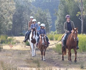 Horse Riding at Oaks Ranch and Country Club - Sunshine Coast Tourism
