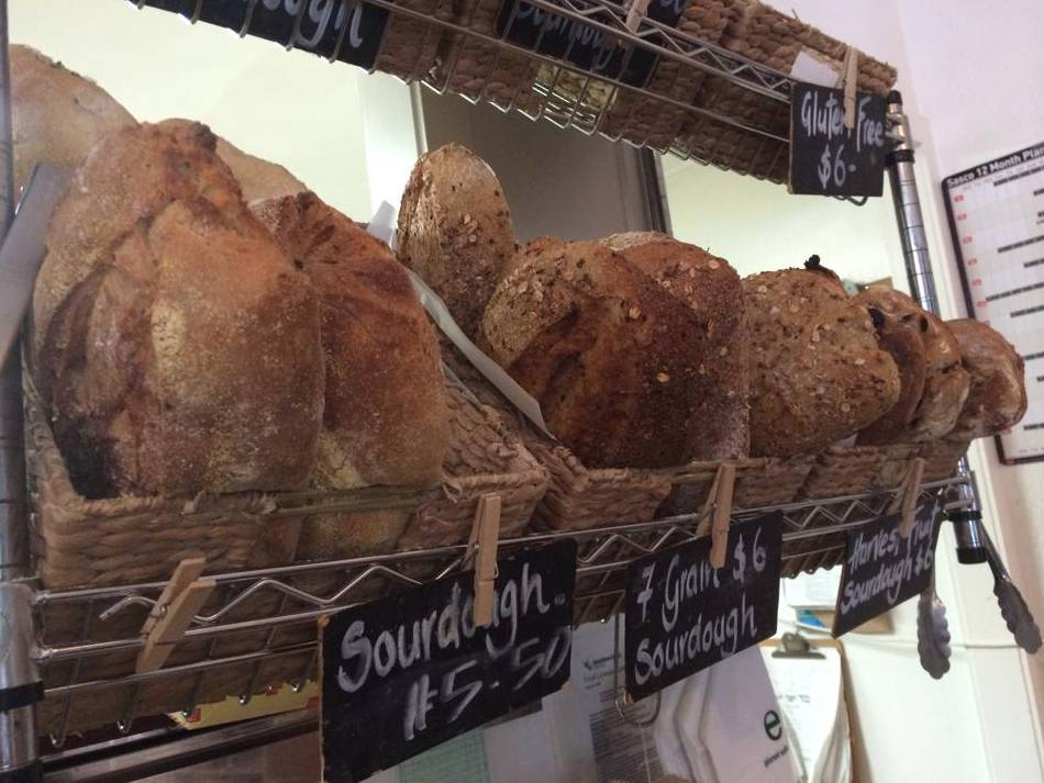 Harvest Breads Cafe - Sunshine Coast Tourism