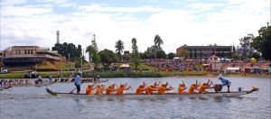 Jacaranda Dragon Boat Races - Sunshine Coast Tourism