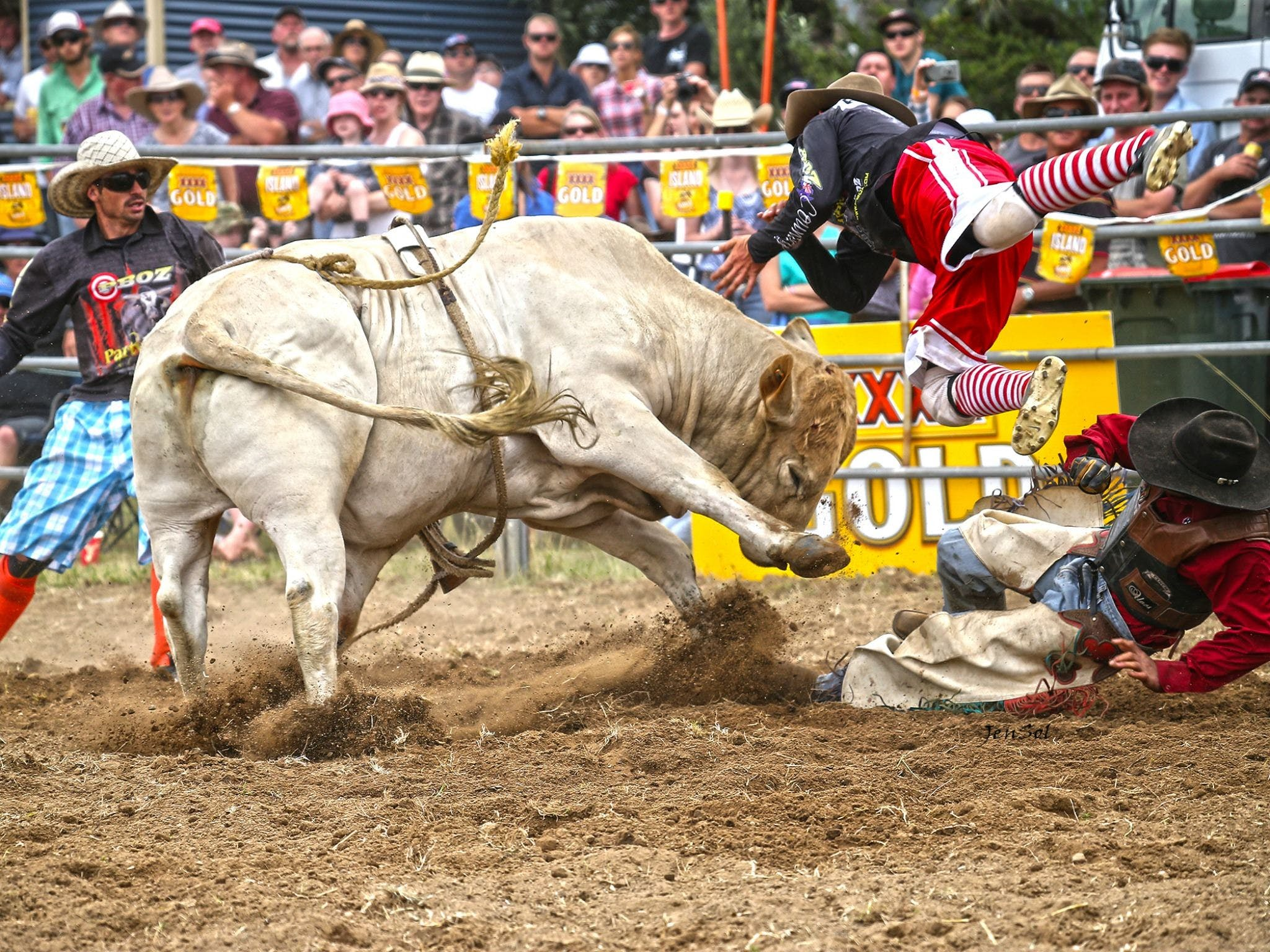 Jindabyne's Man From Snowy River Rodeo - Sunshine Coast Tourism