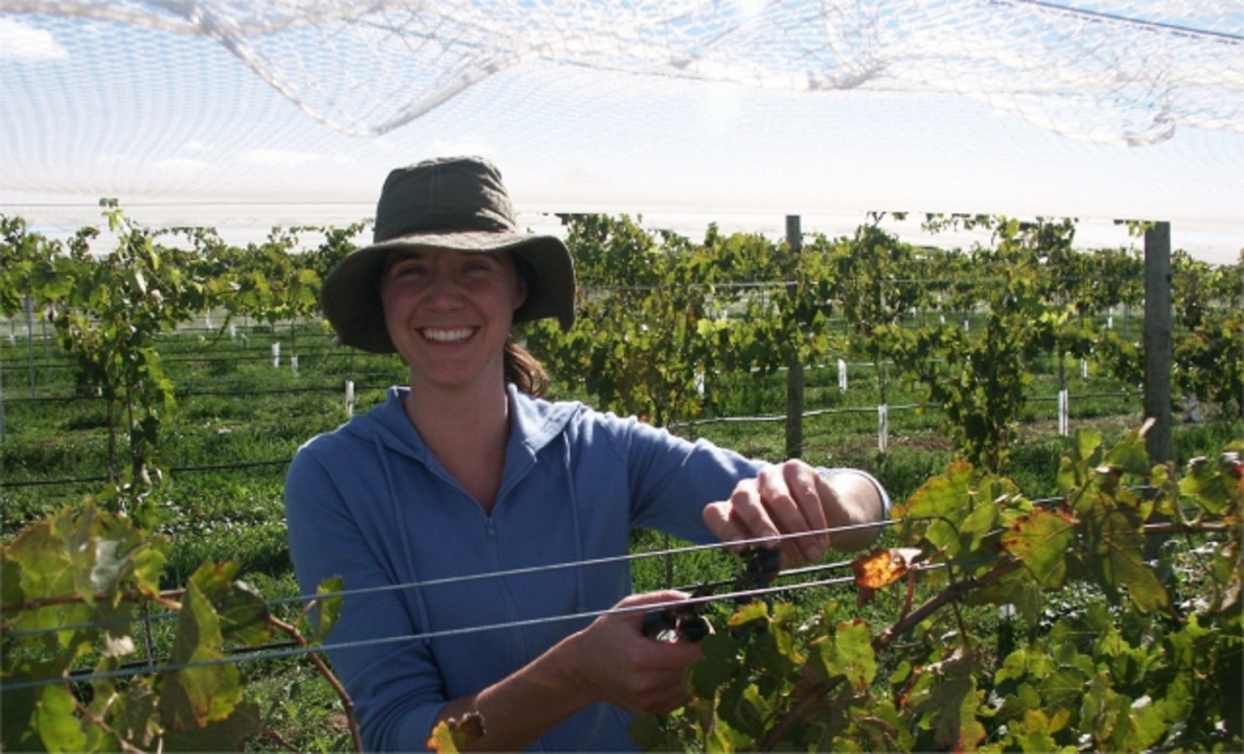Kingsdale Wines - Cellar Door Wine Tastings - Sunshine Coast Tourism