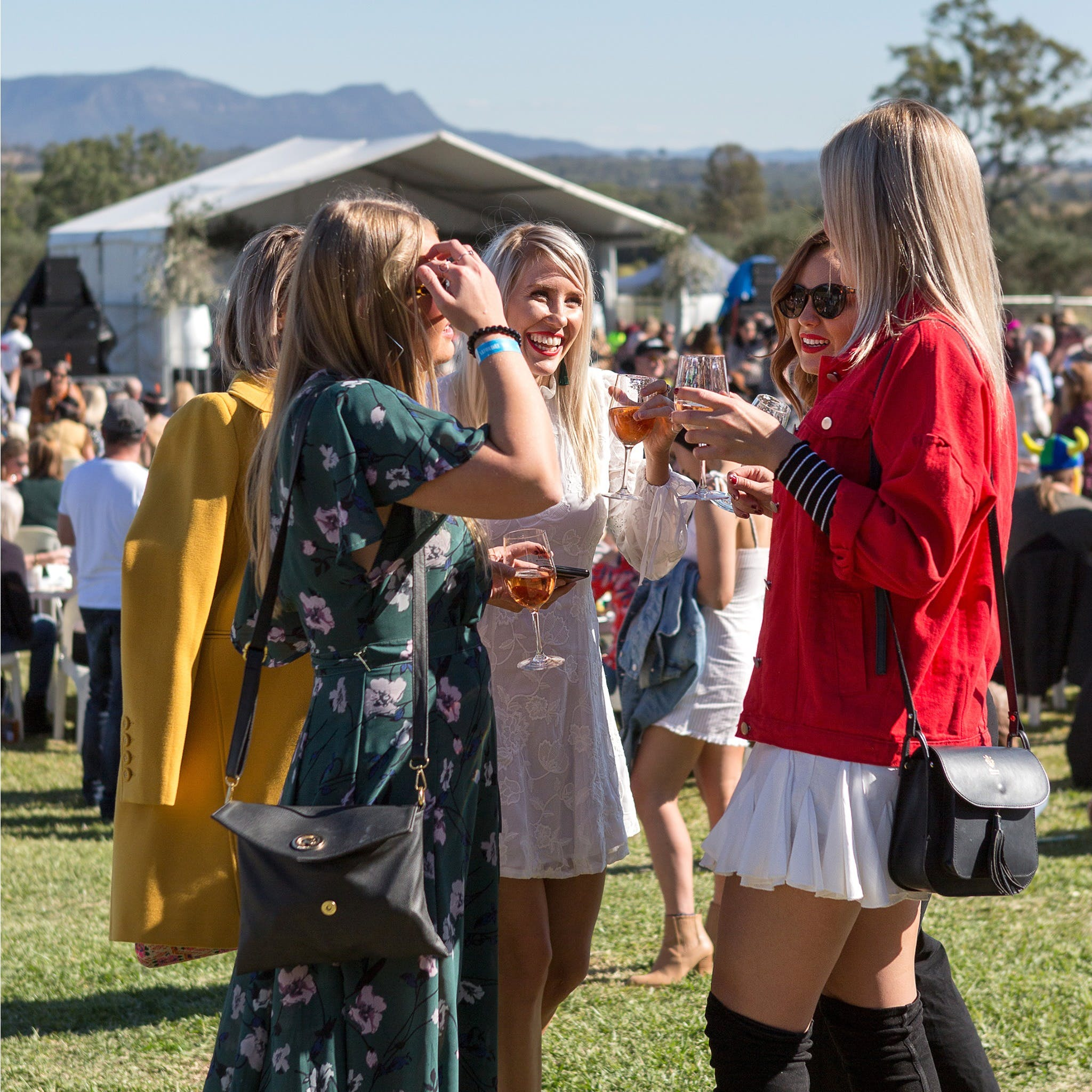 Lovedale Long Lunch - Sunshine Coast Tourism
