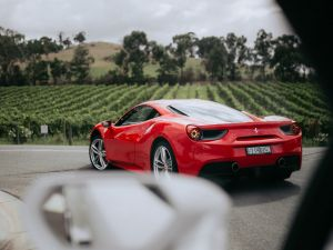 The Prancing Horse Supercar Drive Day Experience - Melbourne Yarra Valley - Sunshine Coast Tourism