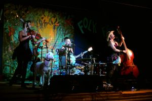 Bony Mountain Folk Festival - Sunshine Coast Tourism