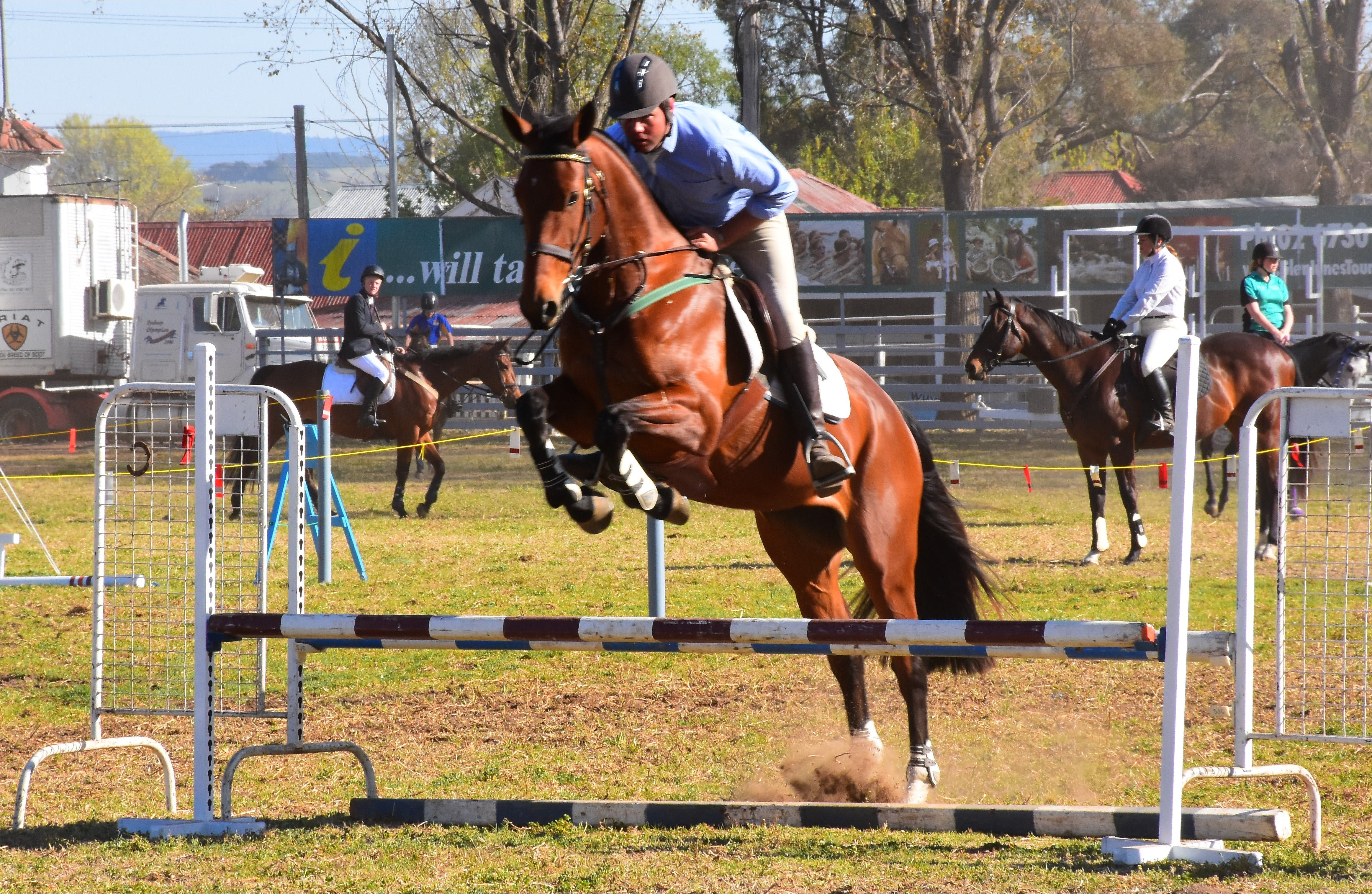 Glen Innes Pastoral and Agricultural Show - Sunshine Coast Tourism
