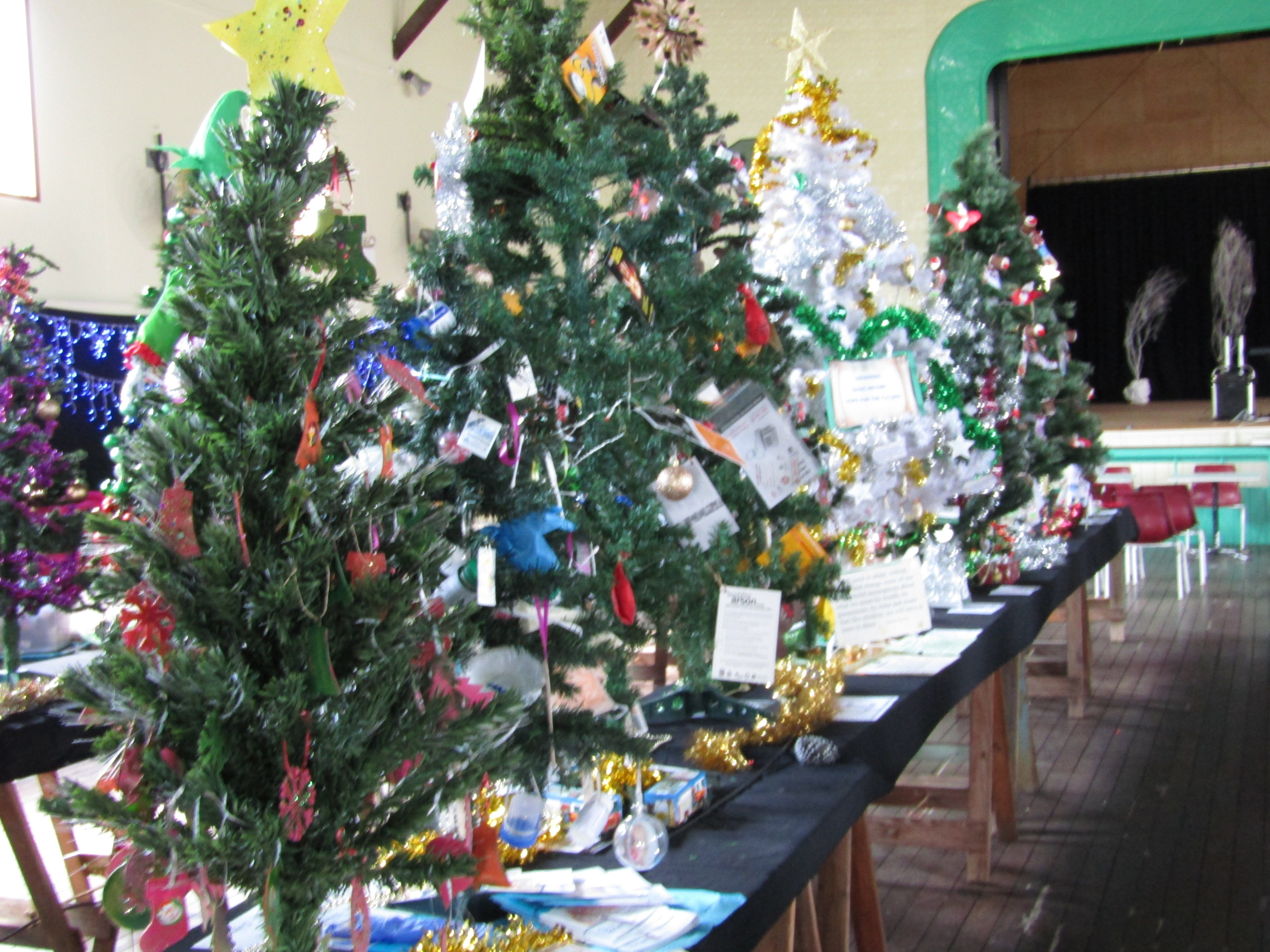 Mount Morgan Christmas Tree Festival - Sunshine Coast Tourism