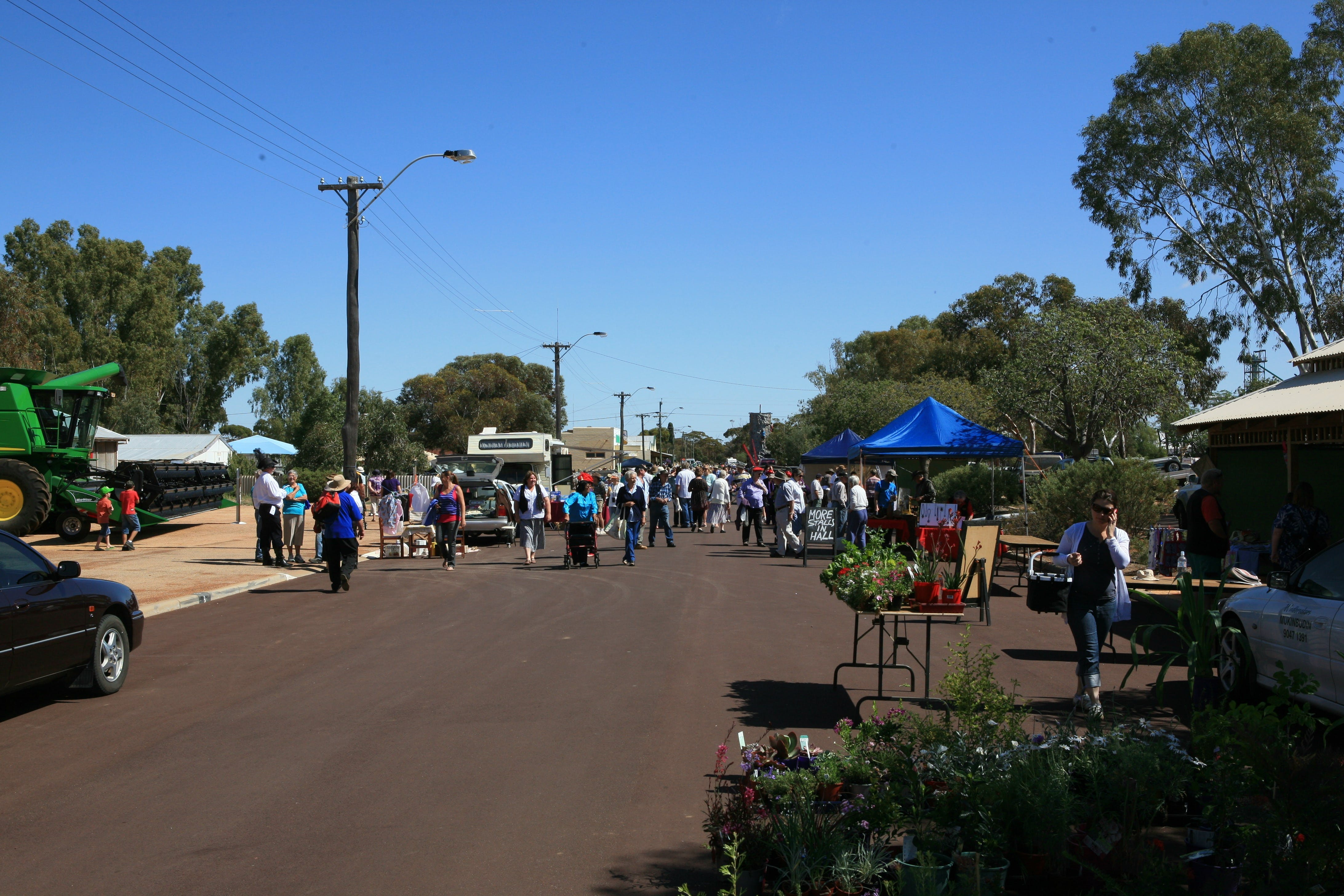 Nungarin Markets - Sunshine Coast Tourism