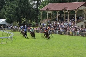 Tumut Boxing Day Races - Sunshine Coast Tourism