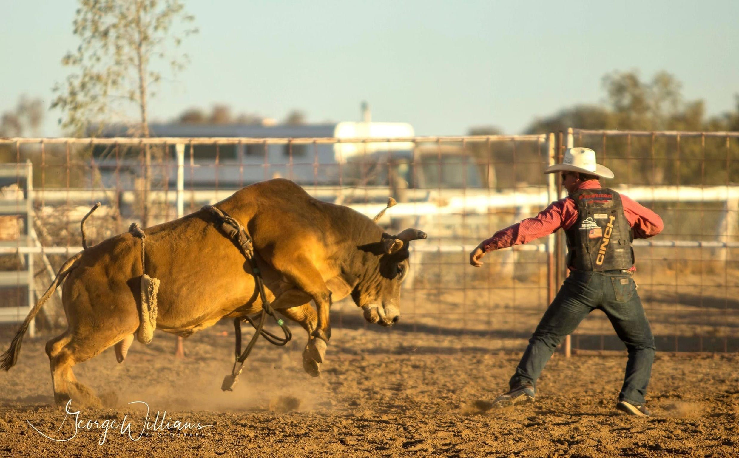Walgett Charity Bushman's Carnival Rodeo and Campdraft - Sunshine Coast Tourism