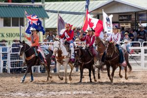 Warwick Rodeo National APRA National Finals and Warwick Gold Cup Campdraft - Sunshine Coast Tourism