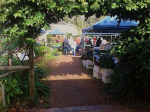 Berry Produce Market - Sunshine Coast Tourism