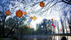 Lanterns on the Lagoon - Sunshine Coast Tourism