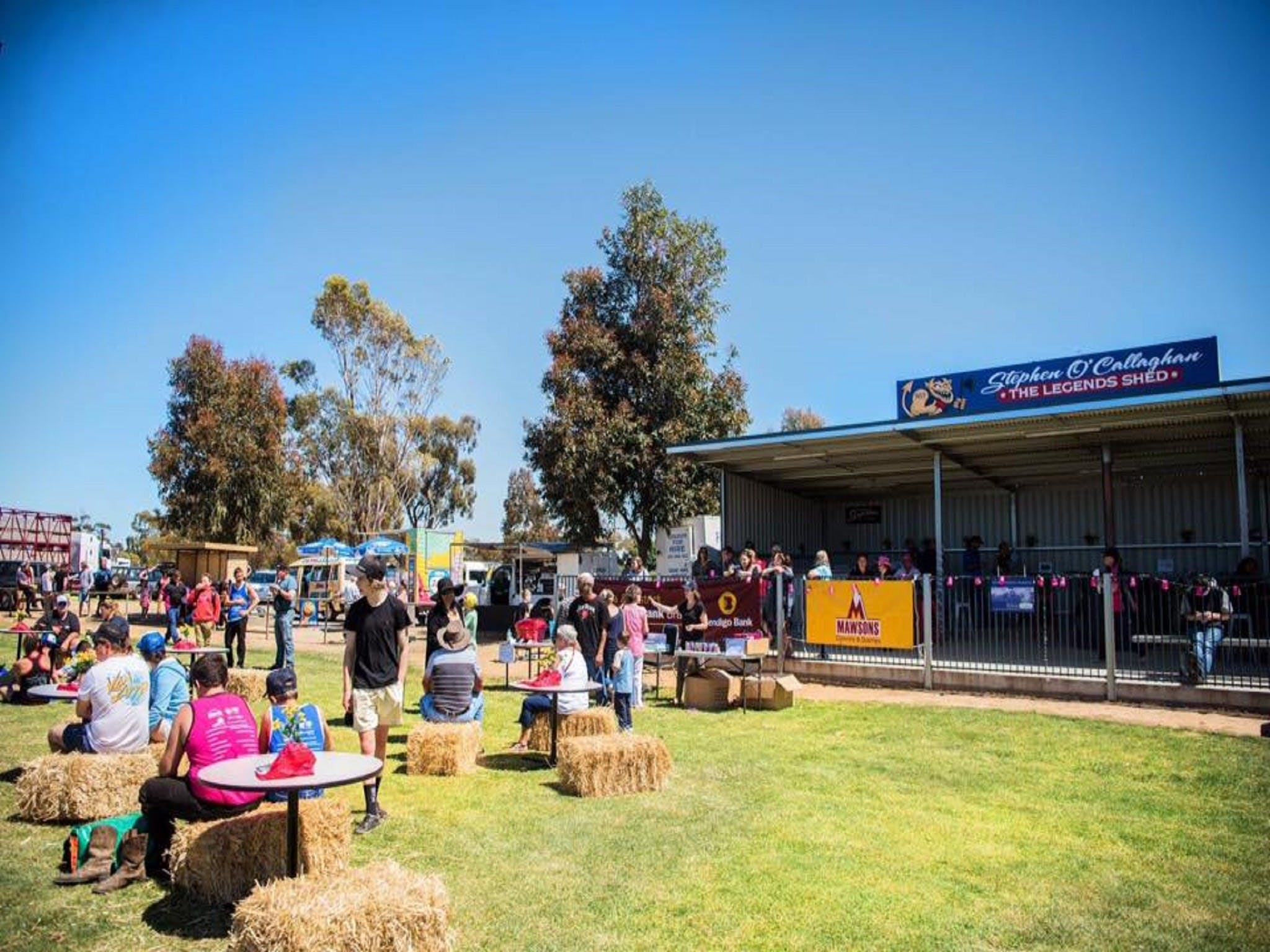 Mathoura Speed Shear and Annual Cancer Fundraiser - Sunshine Coast Tourism