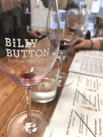 Billy Button Cellar Door - Sunshine Coast Tourism