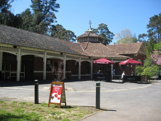 Hepburn Pavilion Cafe - Sunshine Coast Tourism
