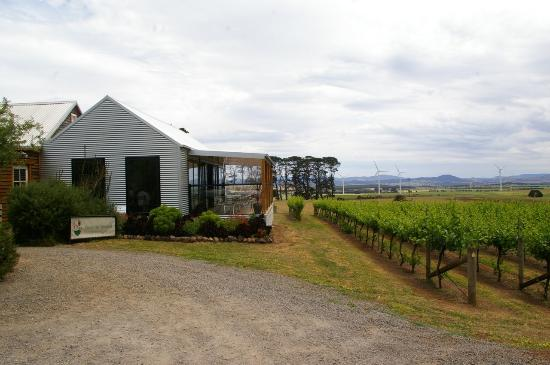 Quoin Hill Winery - Sunshine Coast Tourism