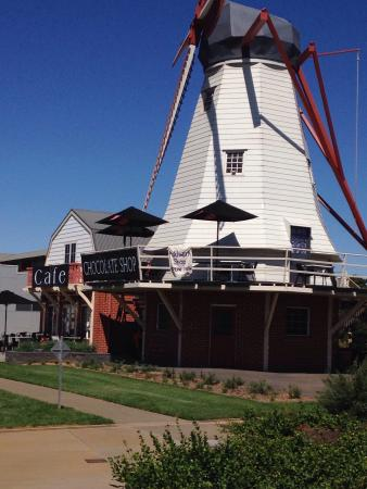 The Windmill Chocolate Shop  Cafe - Sunshine Coast Tourism