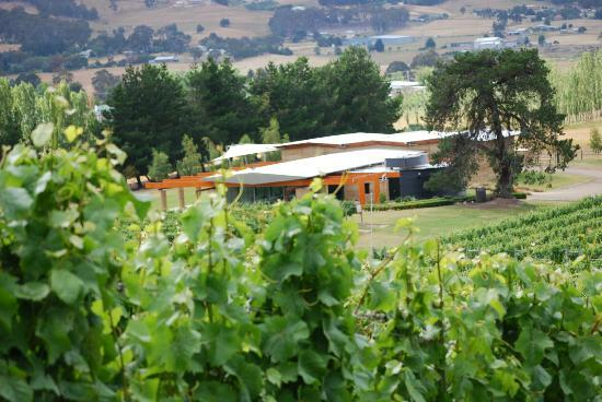 Home Hill Winery Restaurant