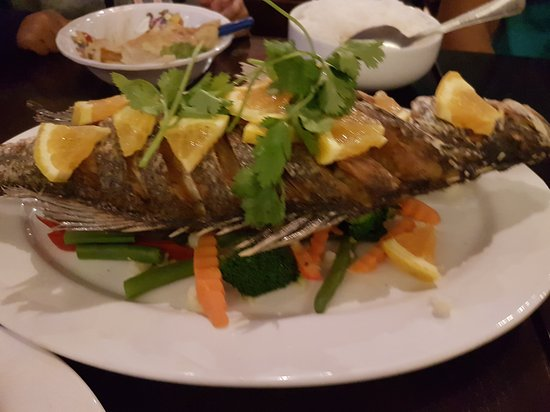 White Jasmine Thai Cuisine - Sunshine Coast Tourism