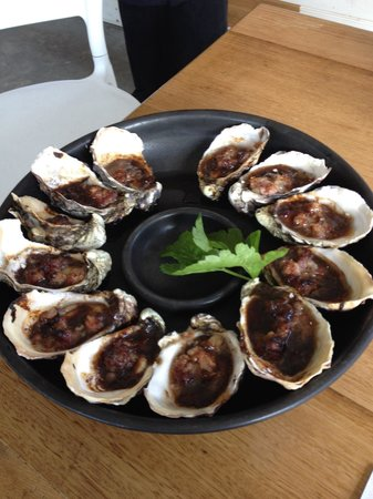 Get Shucked Oyster - Sunshine Coast Tourism