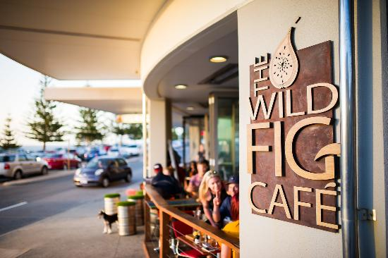 The Wild Fig - Sunshine Coast Tourism
