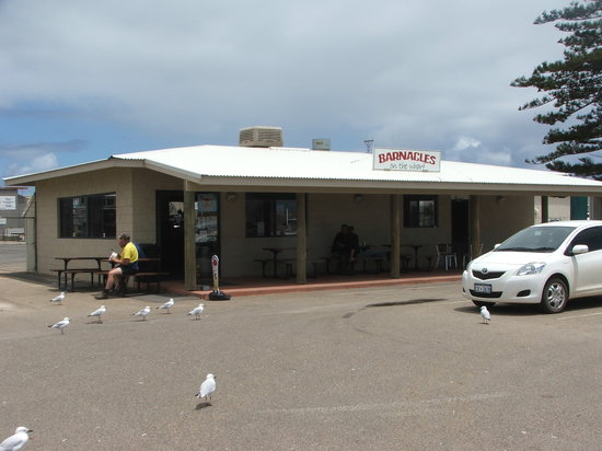 Barnacles Food Bar - Sunshine Coast Tourism