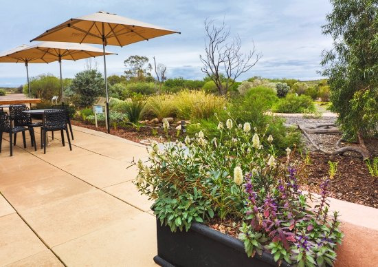 Arid Lands Botanic Garden Cafe - Sunshine Coast Tourism