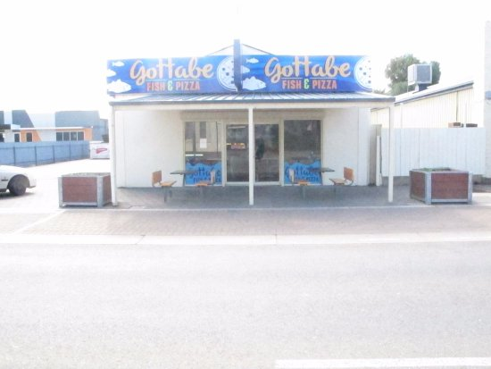 GOTTABEFISH - Sunshine Coast Tourism