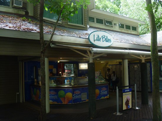 Lite Bites - Sunshine Coast Tourism